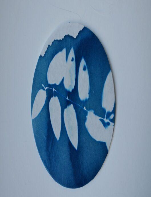 Attrape reve en cyanotype