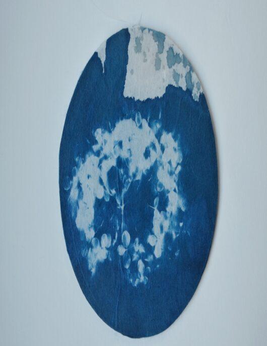 Attrape reve en cyanotype à l'hortensia