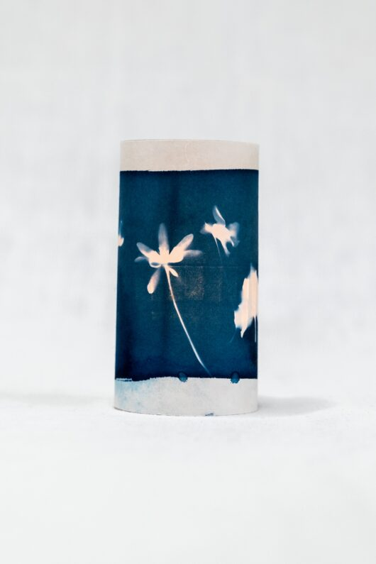 Photophores cyanotype