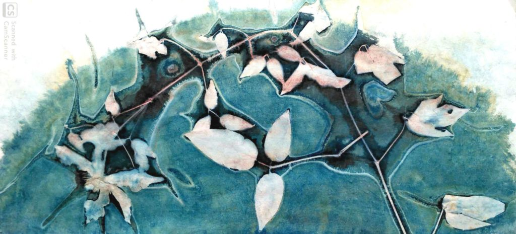 Cyanotype agnes clairand rondo clematite