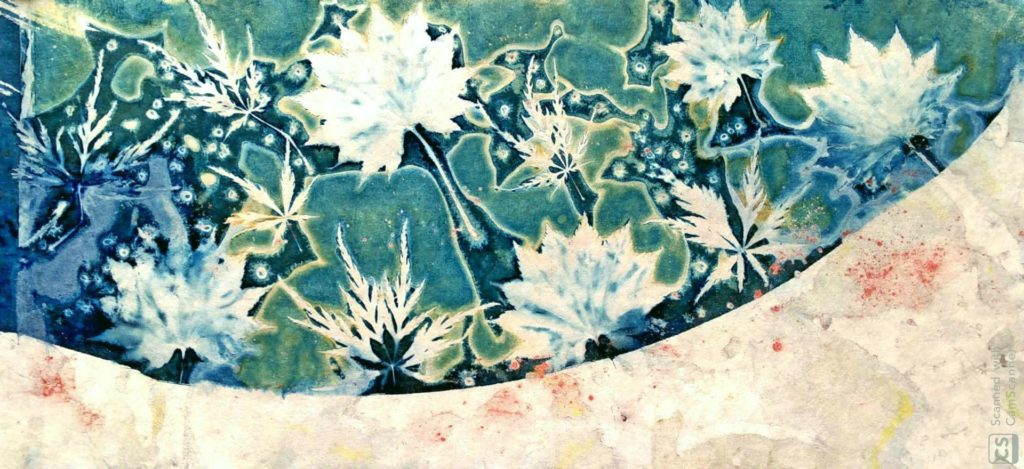 Cyanotype agnes clairand artiste